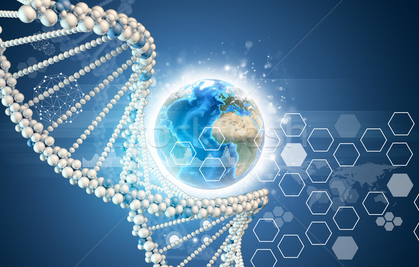DNA model and Earth with hexagons Stock photo © cherezoff