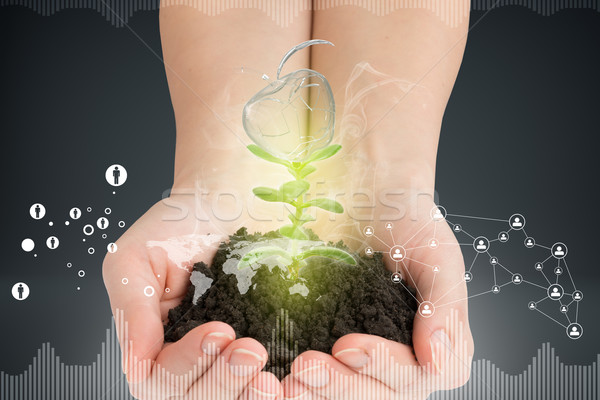 Womans hands holding plant with ground and apple Stock photo © cherezoff