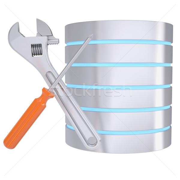 Schroevendraaier sleutel database geïsoleerd geven witte Stockfoto © cherezoff
