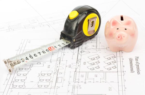 рулетка Piggy Bank мнение свинья жира Сток-фото © cherezoff