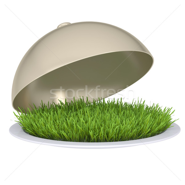 Green grass on a plate with a lid Stock photo © cherezoff