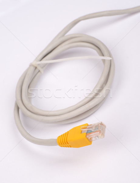 Twisted yellow computer cable Stock photo © cherezoff