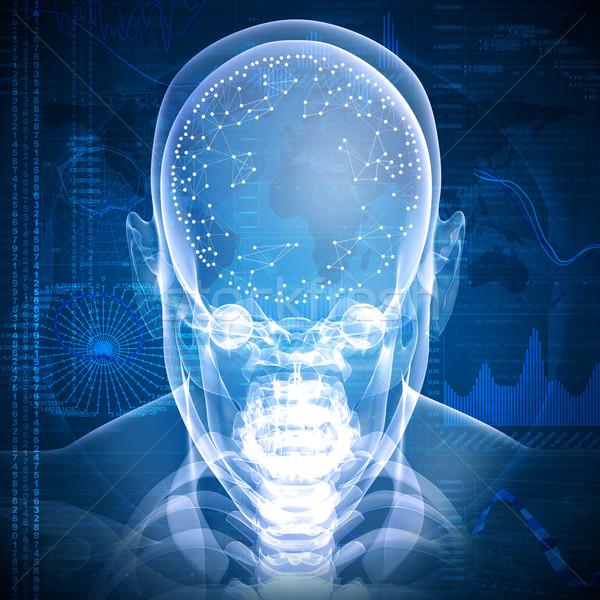 Xray imagen cabeza gráficos comunicación cuerpo Foto stock © cherezoff
