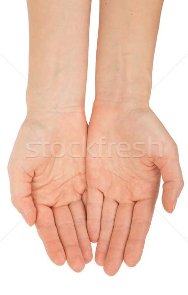 Humans arms on white Stock photo © cherezoff