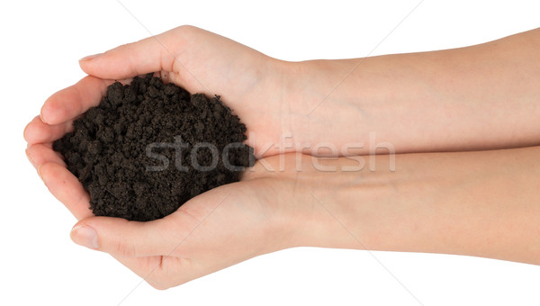 Heap of ground in humans hands, top view Stock photo © cherezoff