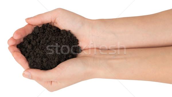 Tas sol mains haut vue isolé Photo stock © cherezoff