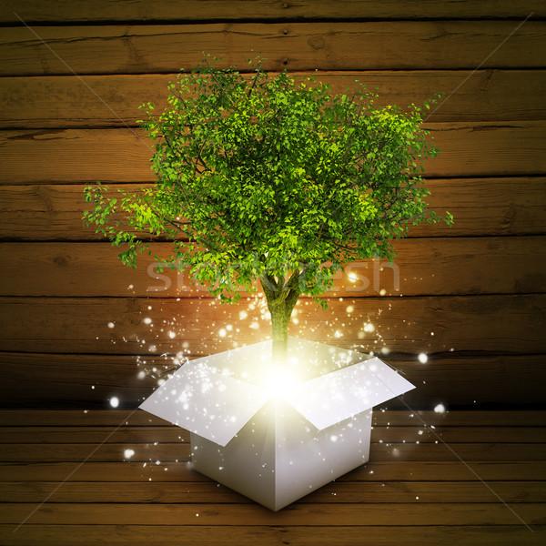 White cardboard box with magical green tree Stock photo © cherezoff