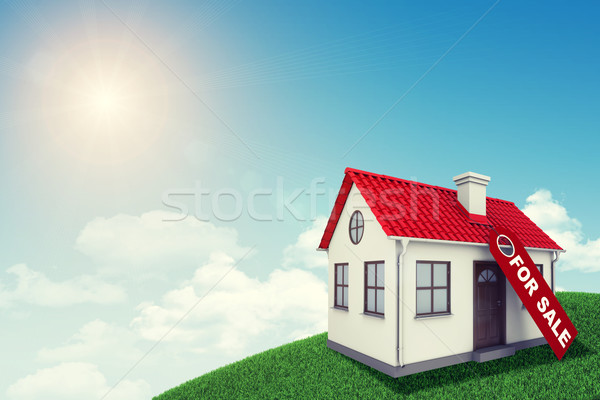 White house with red roof for sale on green grassy hill. Background sun shines brightly, Stock photo © cherezoff