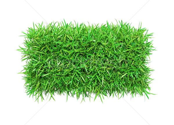 Zöld fű mínusz izolált fehér 3d illusztráció textúra Stock fotó © cherezoff