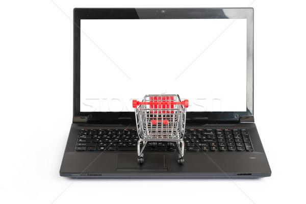 Mały koszyk laptop front widoku odizolowany Zdjęcia stock © cherezoff