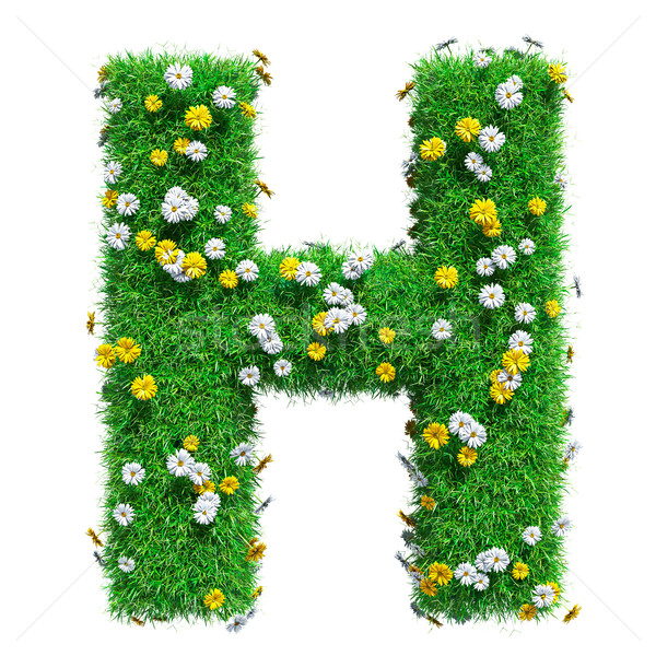 Letter H Of Green Grass And Flowers Stock photo © cherezoff