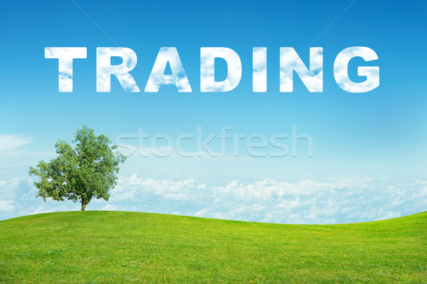 Landscape with trading word Stock photo © cherezoff