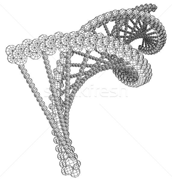 DNA molecule picture Stock photo © cherezoff