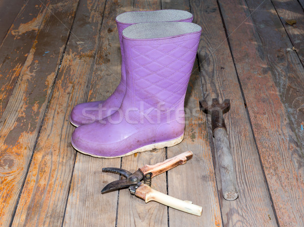 Wellingtons on wooden floor Stock photo © cherezoff