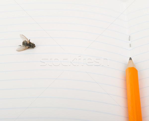 Füzet légy ceruza közelkép kilátás papír Stock fotó © cherezoff