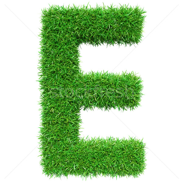 Green Grass Letter E Stock photo © cherezoff