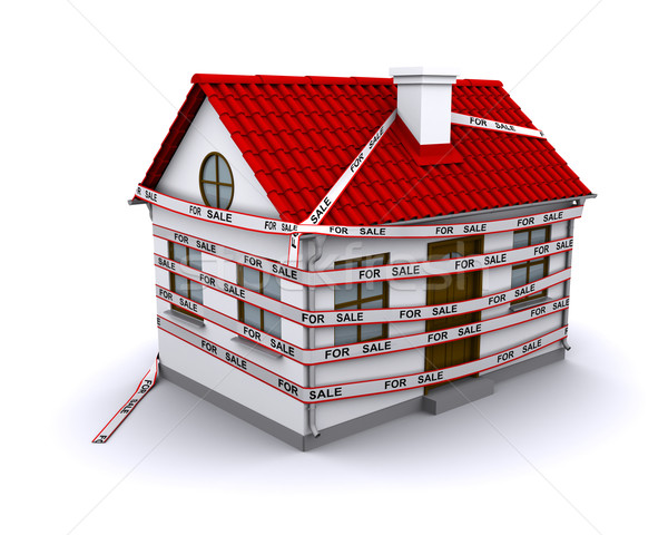 enmeshed in small house band 'for sale' Stock photo © cherezoff
