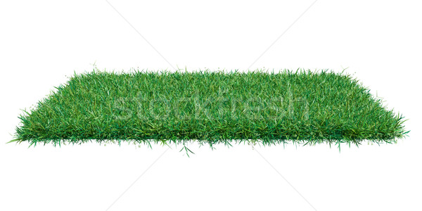 Rectangle plane covered with green grass Stock photo © cherezoff