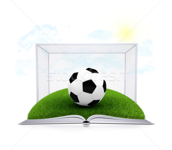 Soccer ball and gate on an open white book Stock photo © cherezoff