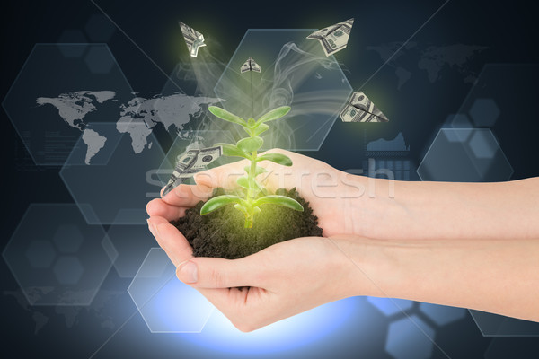 Humans hands holding plant with paper planes Stock photo © cherezoff