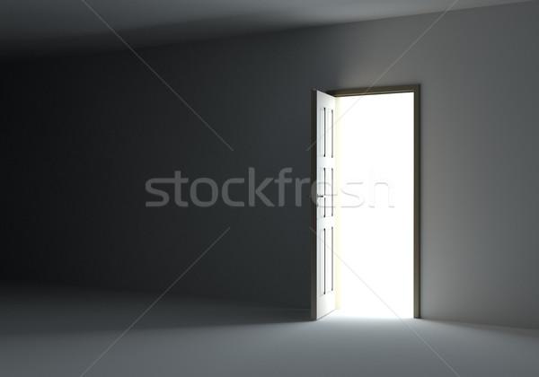 Open door with bright light Stock photo © cherezoff