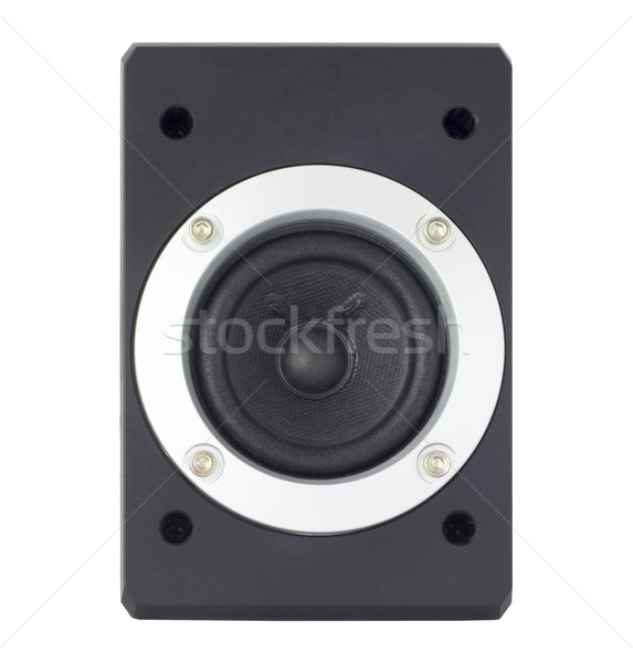 Speaker in a metal frame with bolts Stock photo © cherezoff