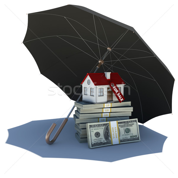 Umbrella covers small house and money Stock photo © cherezoff