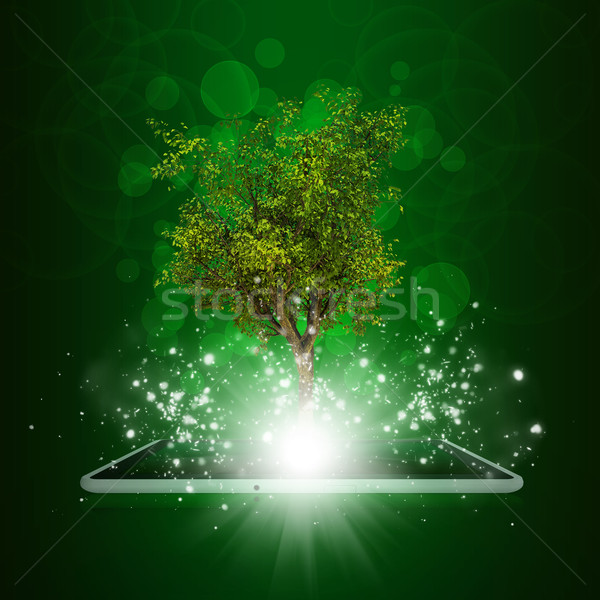 Magiczny promienie świetle ciemne Zdjęcia stock © cherezoff