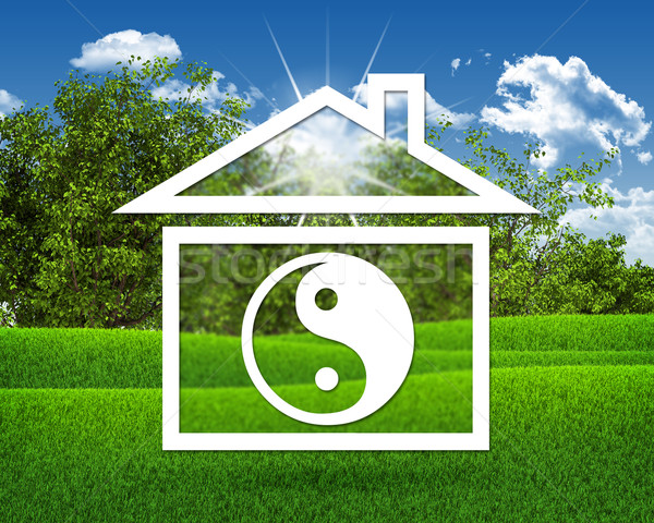 House icon with symbol of yin-yang Stock photo © cherezoff