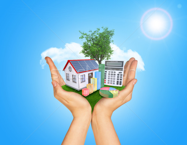 Hands holding green grass with house on ground. Standing tree and clouds in background Stock photo © cherezoff