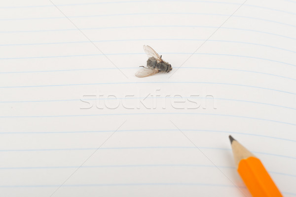Copybook with fly and pencil Stock photo © cherezoff