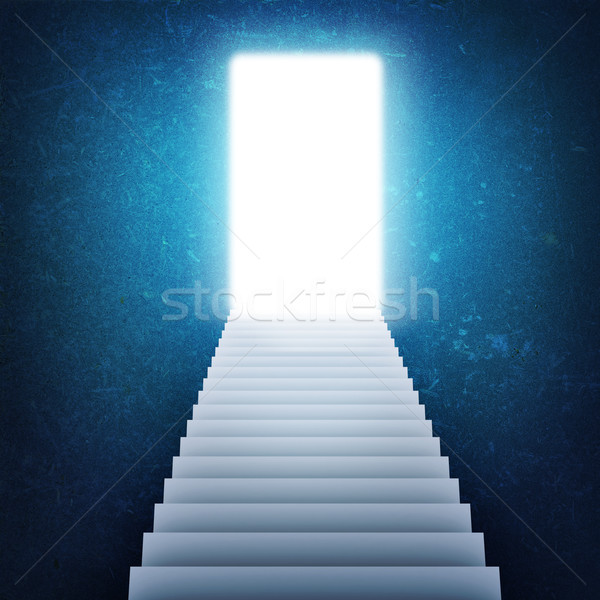 Stairs and magic doors Stock photo © cherezoff