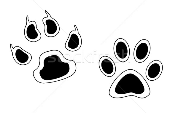 スケッチ 足跡 動物 孤立した 白 ストックフォト © cherezoff