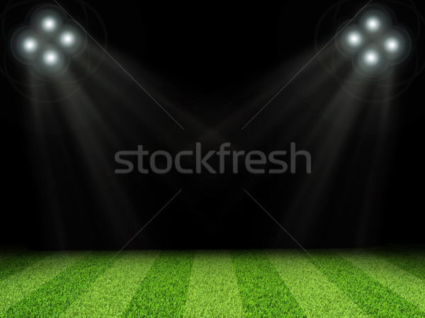 Stadium with bright lights, without indexing Stock photo © cherezoff