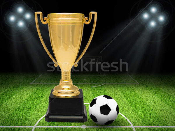 Gold cup with football on pitch Stock photo © cherezoff