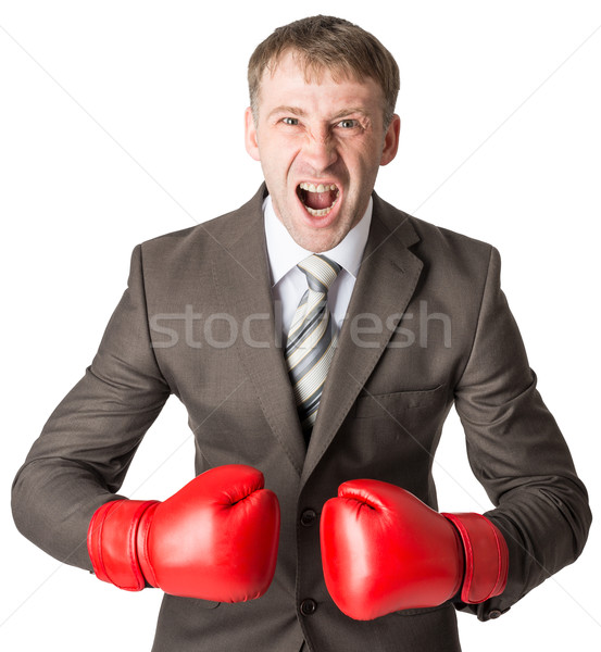 Angry businessman in boxing gloves  Stock photo © cherezoff