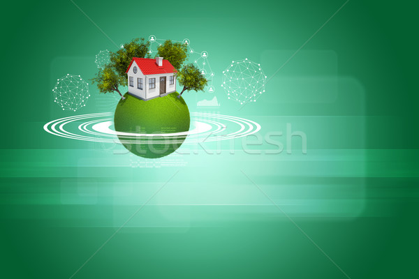 Earth with house, trees and wire-frame spheres Stock photo © cherezoff