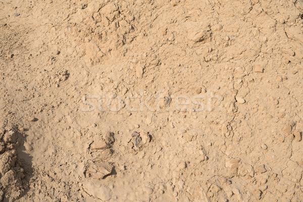 Resumen suelo textura pequeño Foto stock © cherezoff