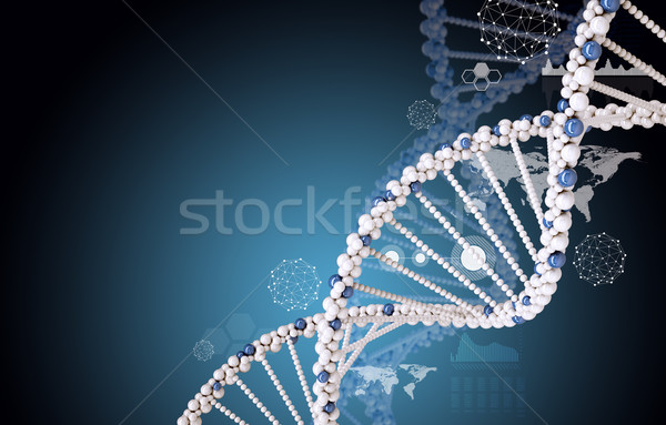 DNA on blue background Stock photo © cherezoff
