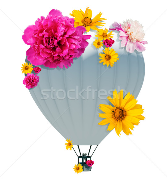 Hot air balloon Stock photo © cherezoff