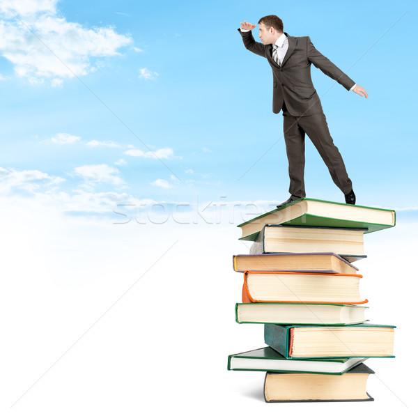 Imprenditore libri nubi top guardando Foto d'archivio © cherezoff
