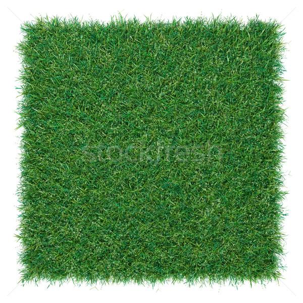 Pièce rectangle forme herbe isolé haut Photo stock © cherezoff