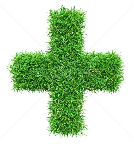 Zöld fű meg izolált fehér 3d illusztráció textúra Stock fotó © cherezoff