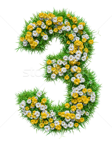 Number 3 of Green Grass And Flowers Stock photo © cherezoff