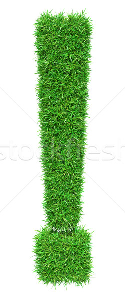 Green grass exclamation point Stock photo © cherezoff