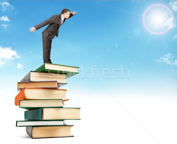 üzletember köteg könyvek égbolt felső néz Stock fotó © cherezoff