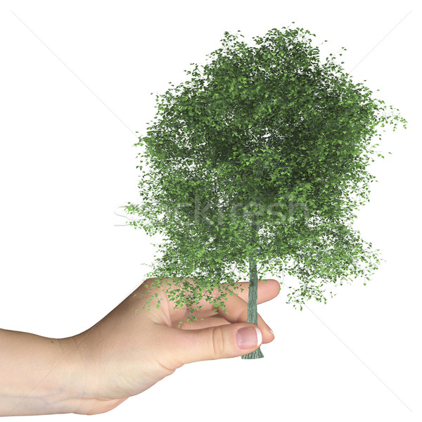 Stock photo: Hand holds cut down a tree. Isolated on white background