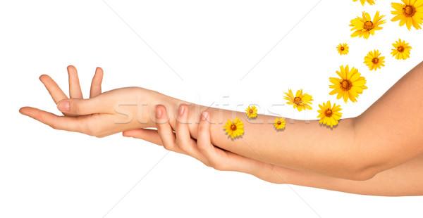 Kobiet broni żółte kwiaty odizolowany biały strony Zdjęcia stock © cherezoff