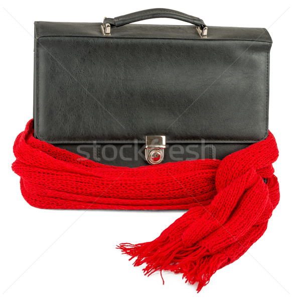 Suitcase with red scarf Stock photo © cherezoff