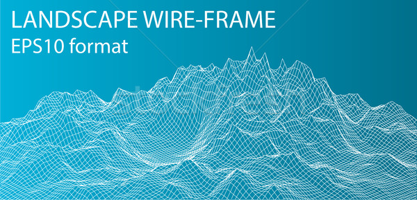 3D Wireframe Landscape. Vector Stock photo © cherezoff